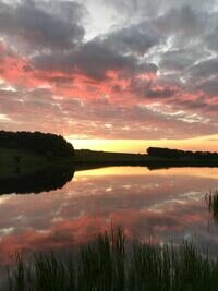 Harnham%20lake%20%20sunrise