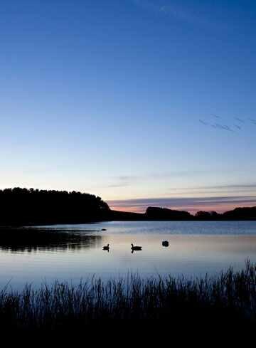 Lake 01